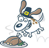 dog-eat-turkey